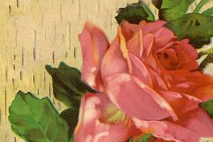 roseflorist