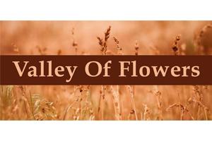 valleyofflowers